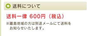 送料について 送料一律 600円(税込)
